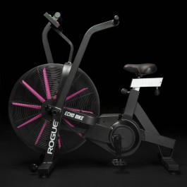 Rogue Echo Bike - Pink Edition