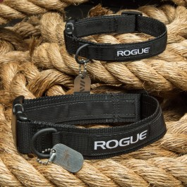 Rogue Dog Collar MIL Edition
