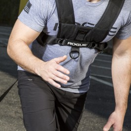 Rogue Sled Harness